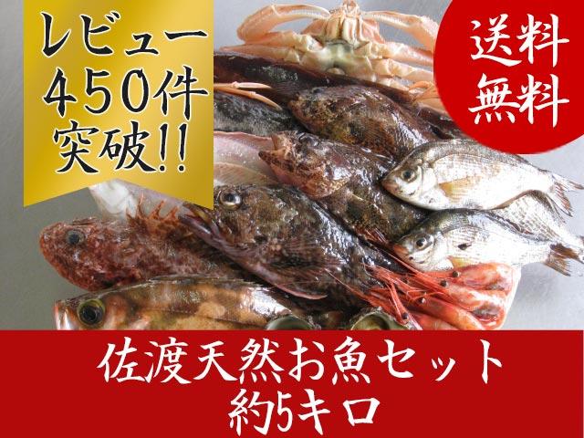 佐渡天然お魚セット約5キロ