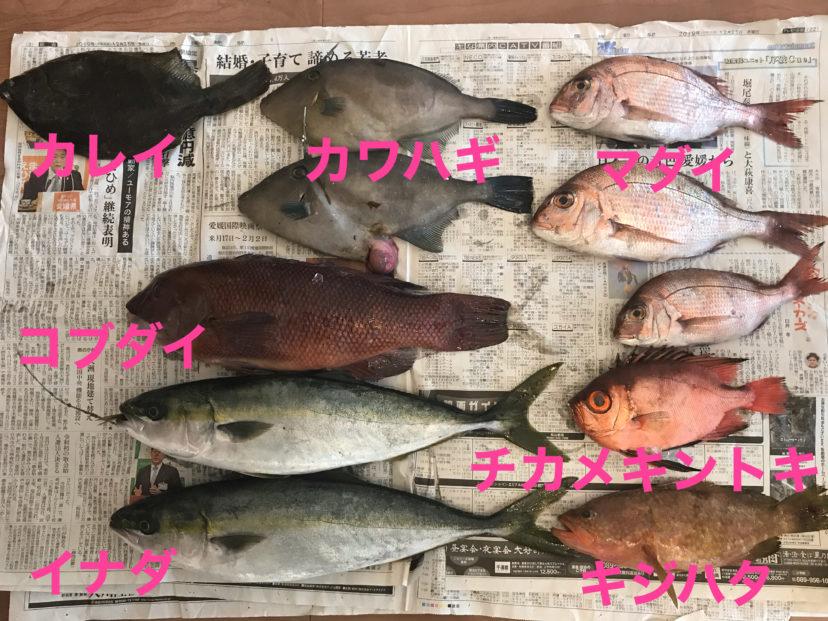 佐渡かすけ商店から送られてきた海鮮たち